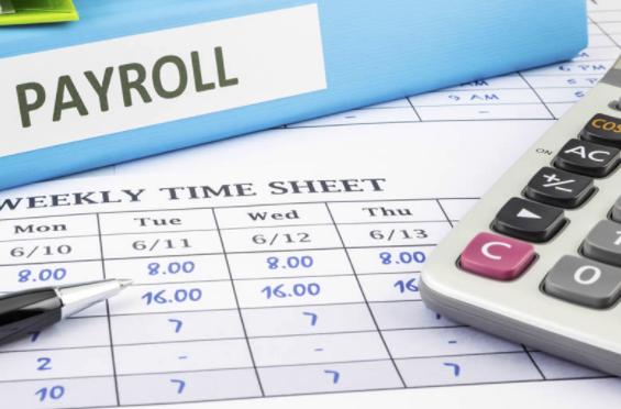 Payroll, Accountancy Payroll, Payroll Accountants